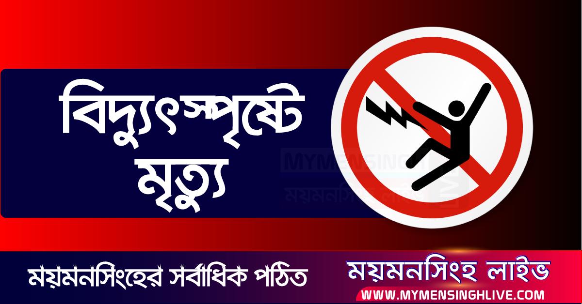 Bidduth-বিদ্যুৎস্পৃষ্টে-Electricity-Shock-Warning-Risk-Of-Dead current